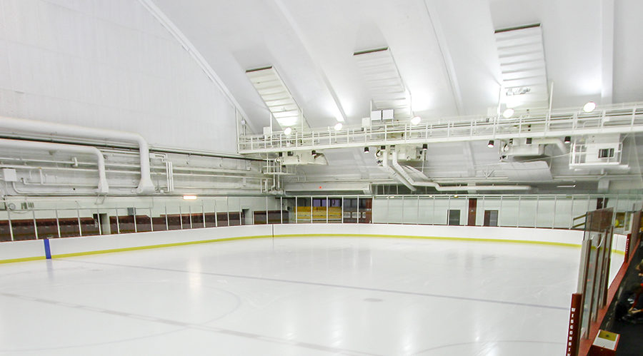 Ice Rink banner
